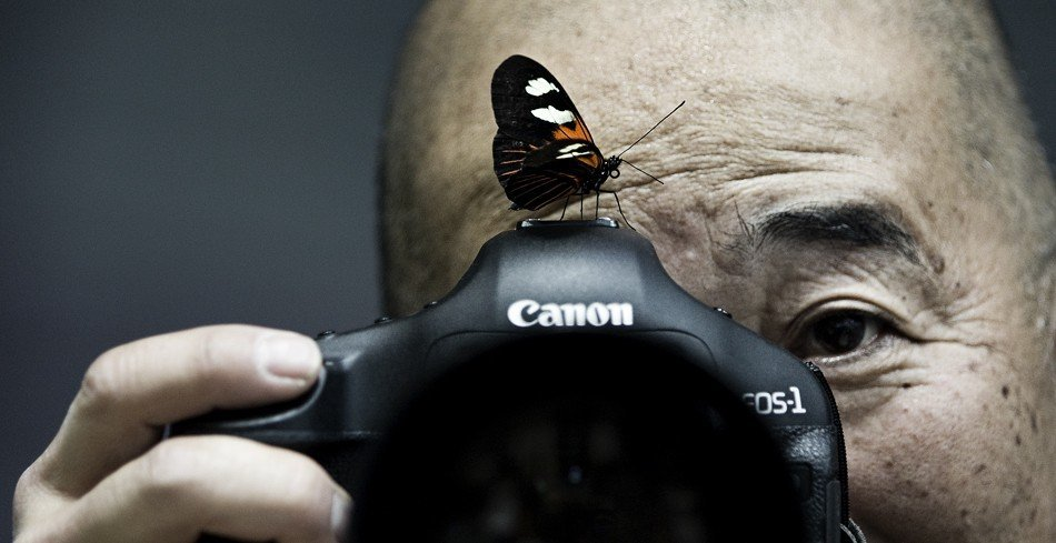 butterfly_canon