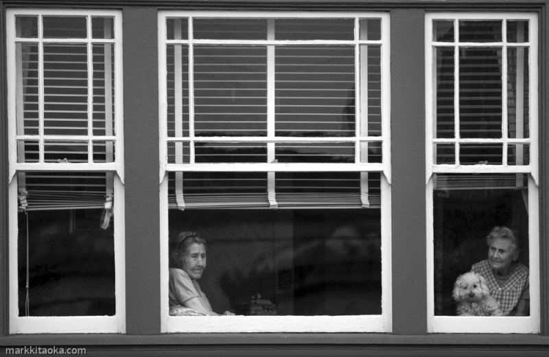 """""""Trio"""" Window shots are my favorites and this one was taken during a street fair. I had to wait 15 minutes for the sun to travel to an angle to light the two women and the dog as they watched the people in the fair below their apartment. I was quite worried that this shot would be missed if they moved from the window. But I waited until the sun was just right and took this shot. Light, expression, environment."""